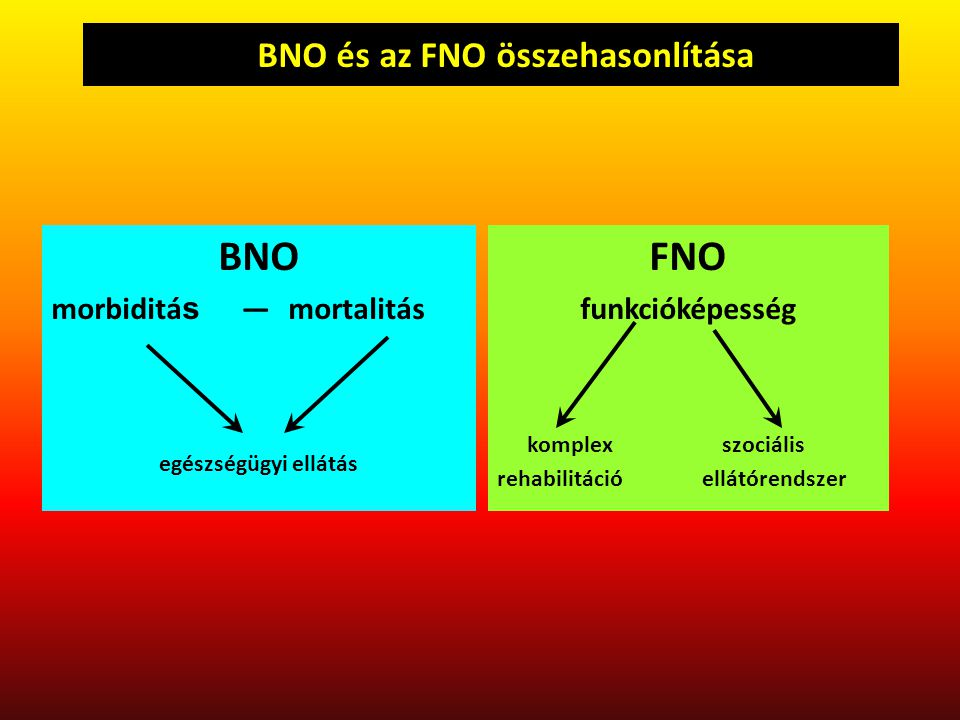 A BNO és az FNO összehasonlítása
