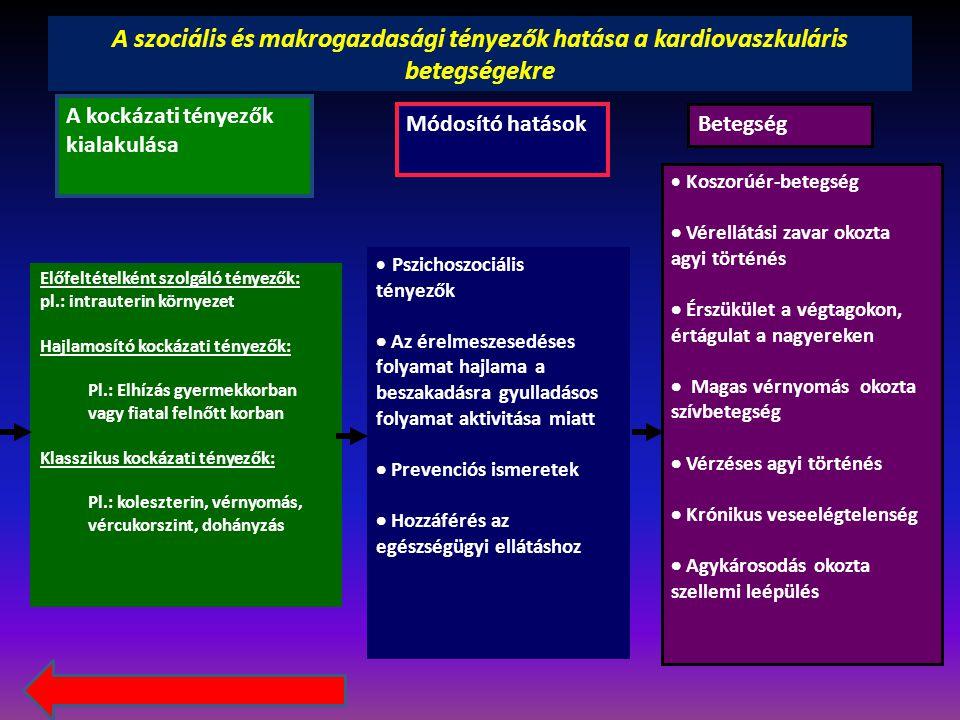 A szociális és makrogazdasági tényezők hatása a kardiovaszkuláris betegségekre