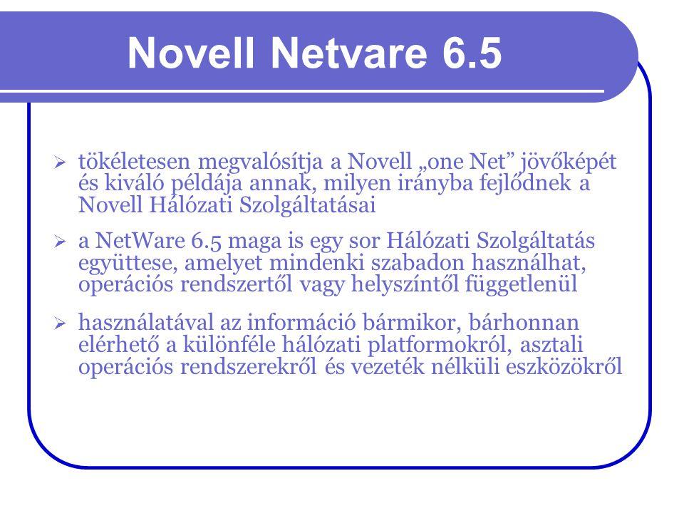 Novell Netvare 6.5