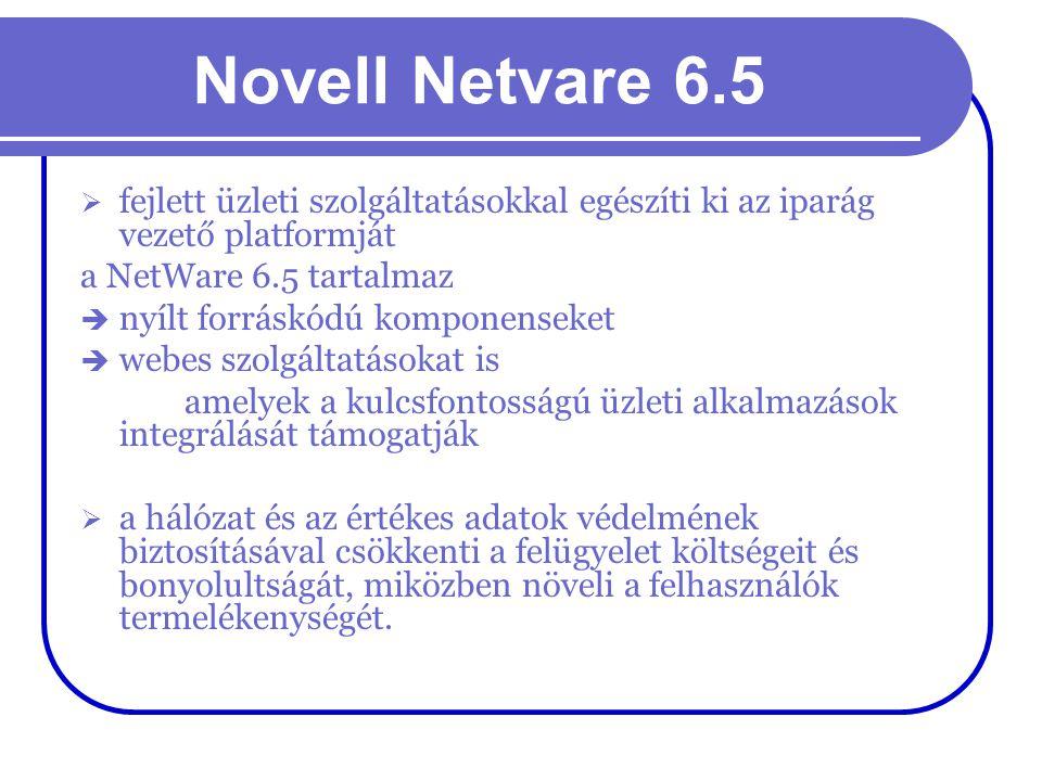 Novell Netvare 6.5 fejlett üzleti szolgáltatásokkal egészíti ki az iparág vezető platformját. a NetWare 6.5 tartalmaz.