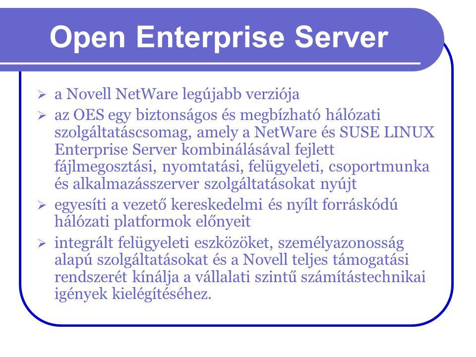 Open Enterprise Server