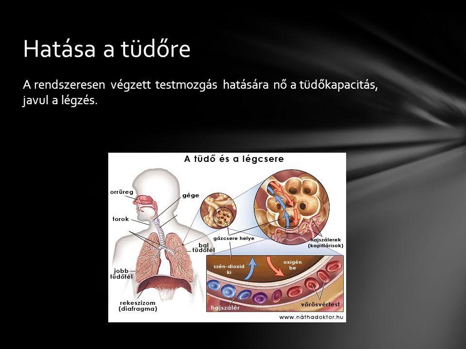Hatása a tüdőre A rendszeresen végzett testmozgás hatására nő a tüdőkapacitás, javul a légzés.