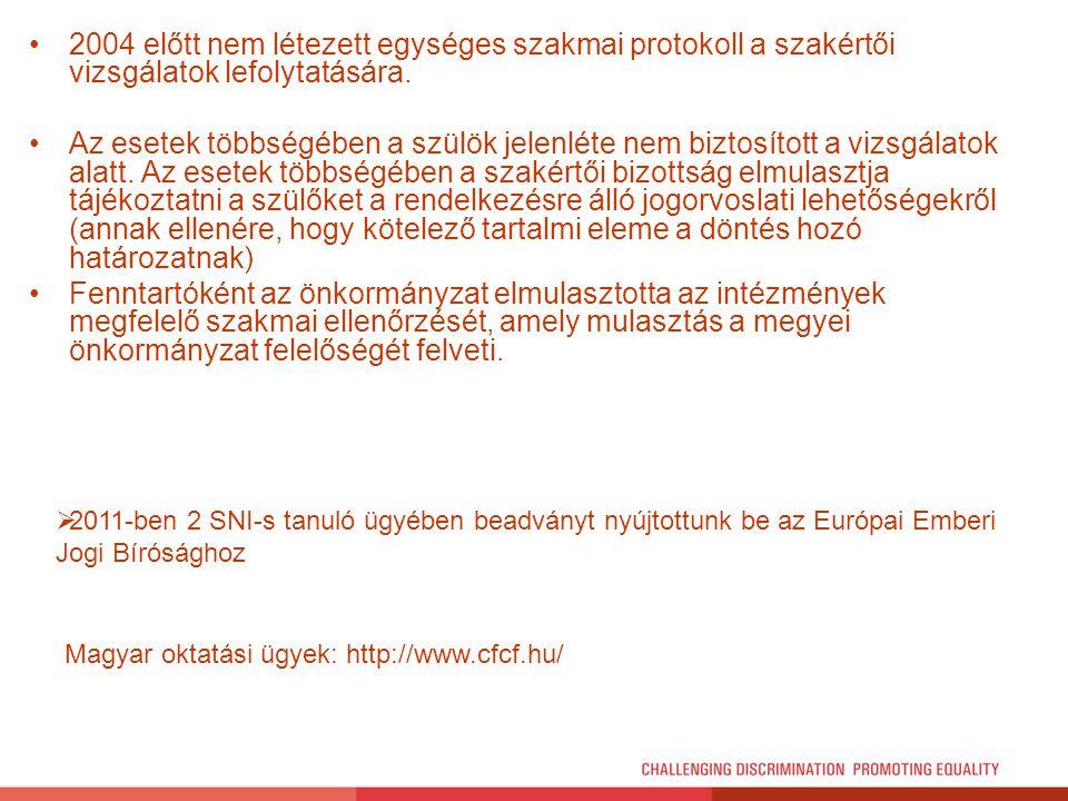 2004 előtt nem létezett egységes szakmai protokoll a szakértői vizsgálatok lefolytatására.