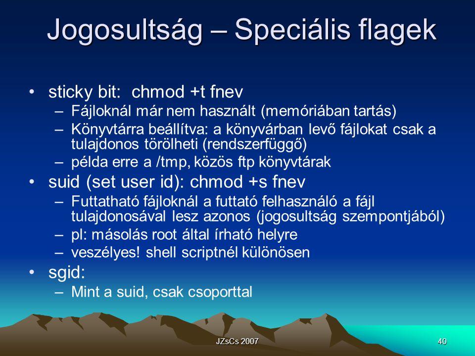 Jogosultság – Speciális flagek