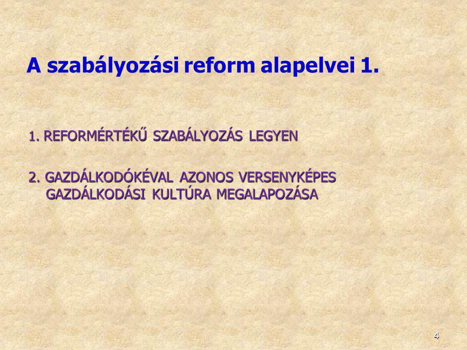 A szabályozási reform alapelvei 1.