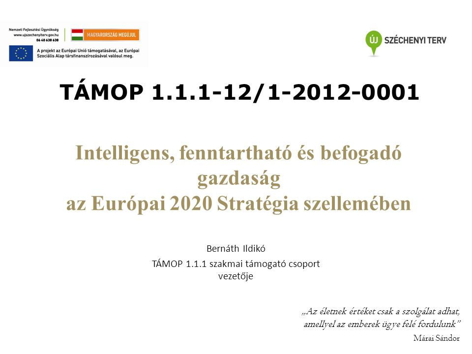 Bernáth Ildikó TÁMOP 1.1.1 szakmai támogató csoport vezetője