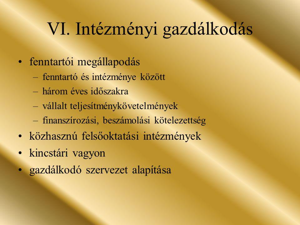 VI. Intézményi gazdálkodás