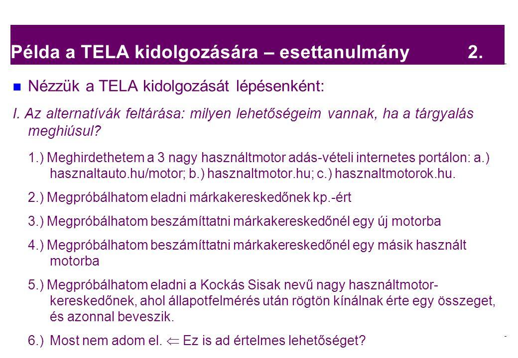 Példa a TELA kidolgozására – esettanulmány 2.