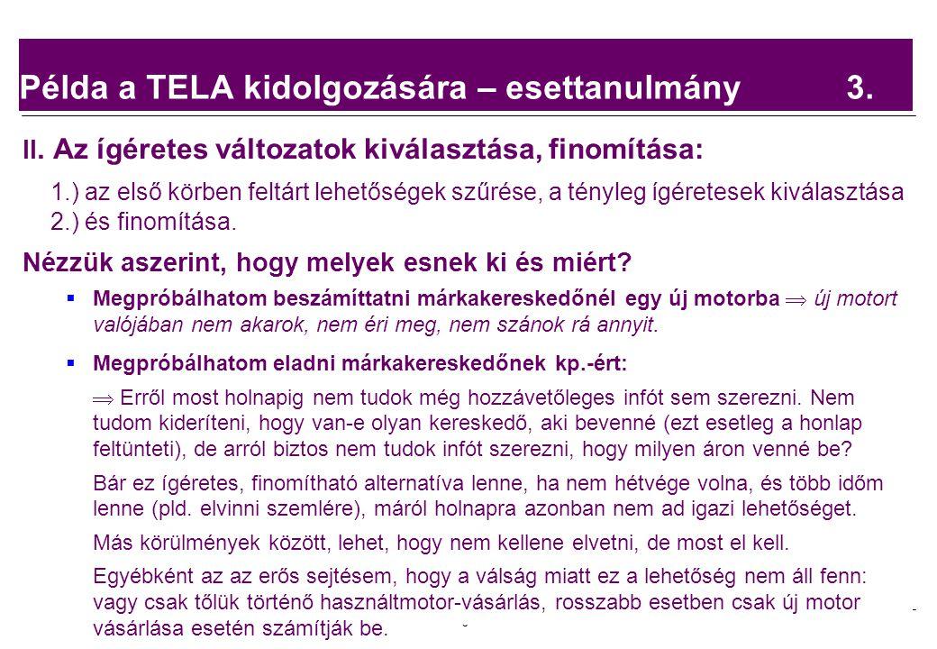 Példa a TELA kidolgozására – esettanulmány 3.