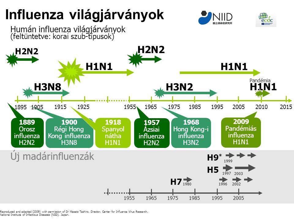 Influenza világjárványok