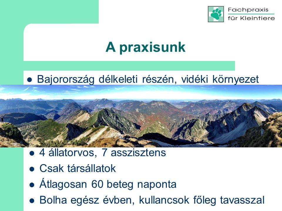 A praxisunk Bajorország délkeleti részén, vidéki környezet