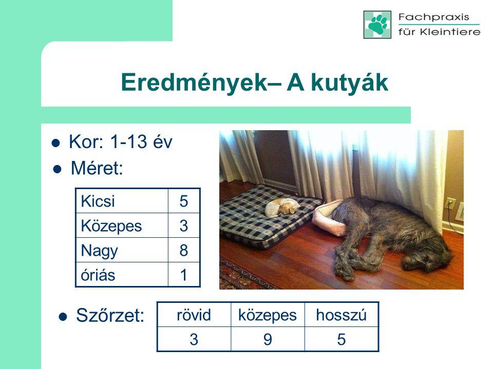 Eredmények– A kutyák Kor: 1-13 év Méret: Szőrzet: Kicsi 5 Közepes 3