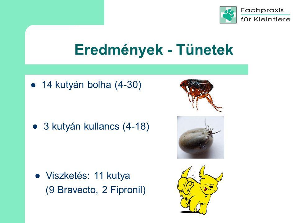 Eredmények - Tünetek 14 kutyán bolha (4-30) 3 kutyán kullancs (4-18)