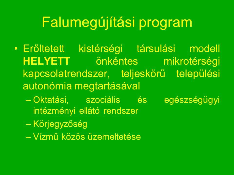 Falumegújítási program