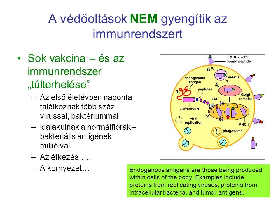 A védőoltások NEM gyengítik az immunrendszert