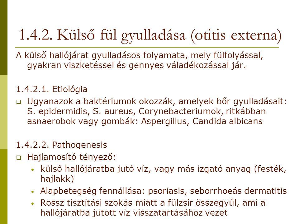1.4.2. Külső fül gyulladása (otitis externa)