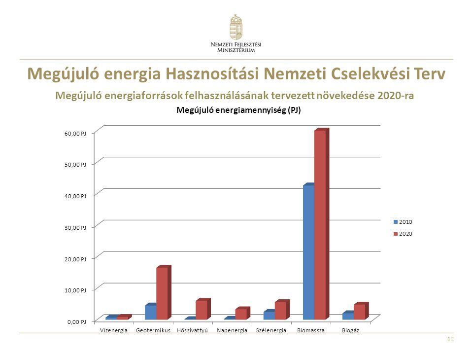 Megújuló energia Hasznosítási Nemzeti Cselekvési Terv