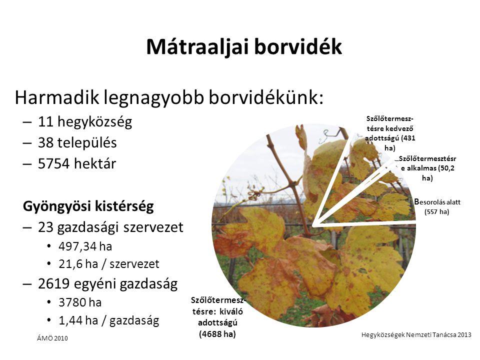 Mátraaljai borvidék Harmadik legnagyobb borvidékünk: 11 hegyközség