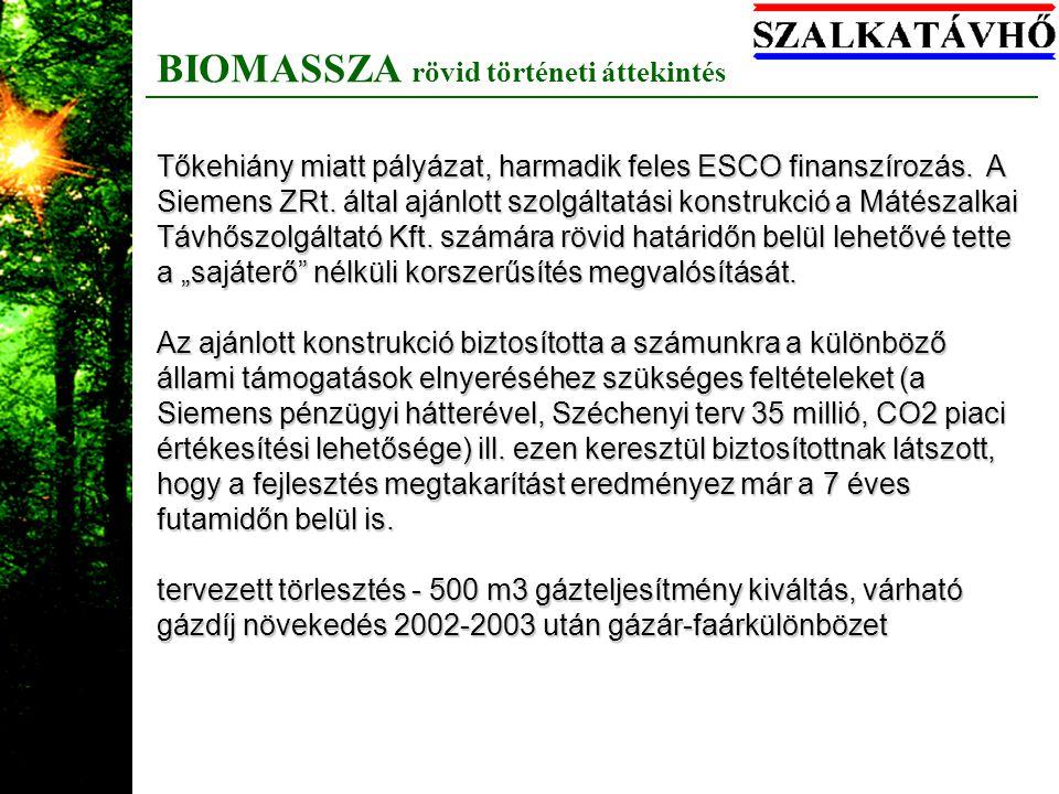 BIOMASSZA rövid történeti áttekintés