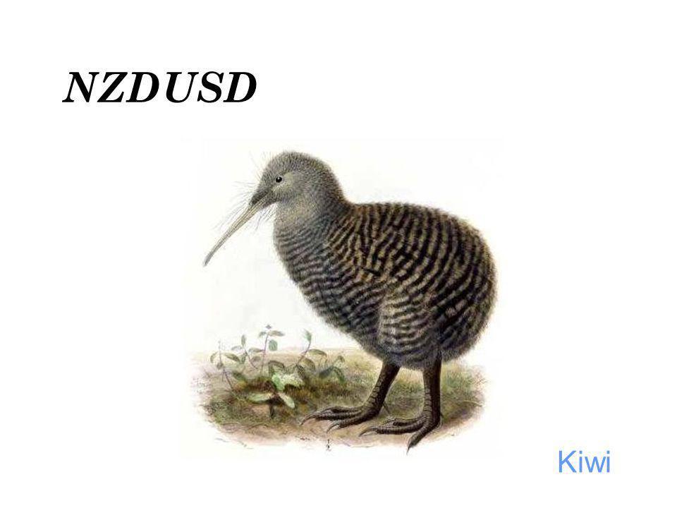 NZDUSD Kiwi