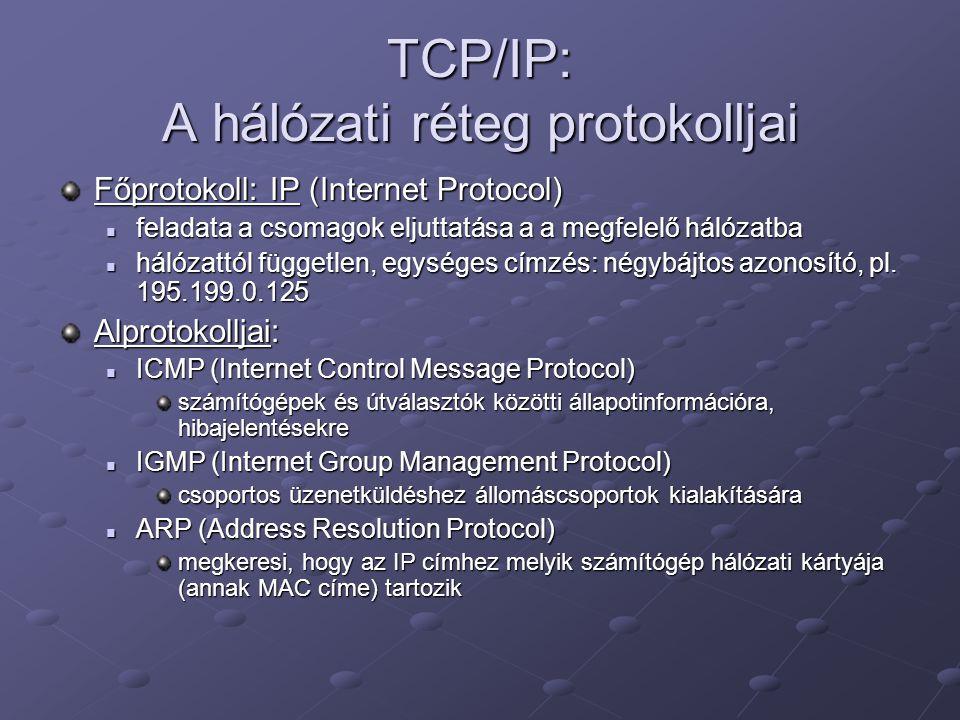 TCP/IP: A hálózati réteg protokolljai