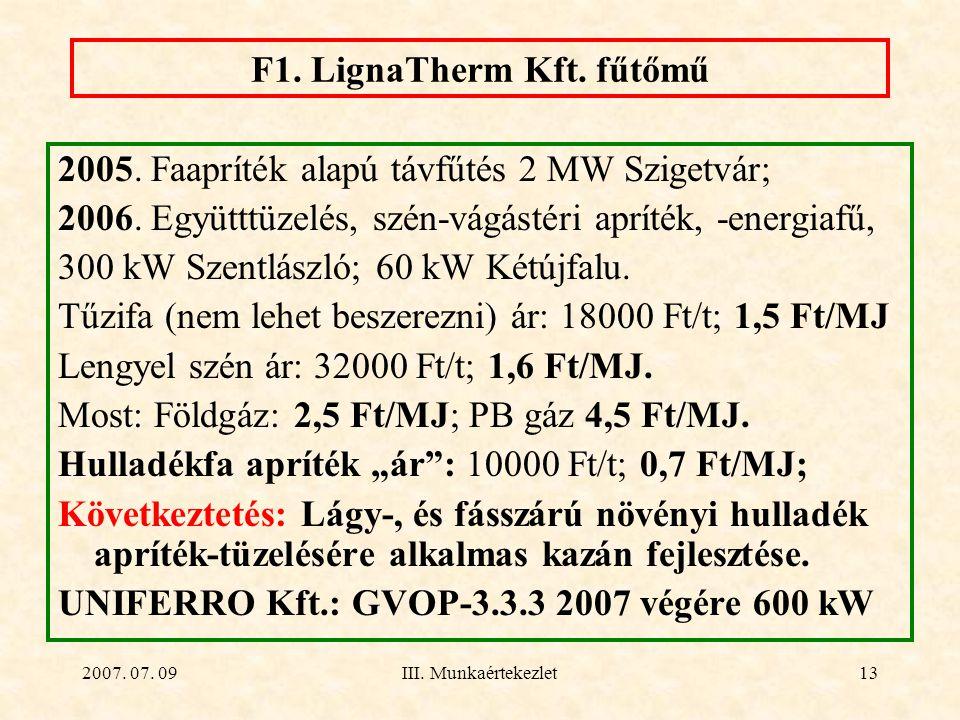 F1. LignaTherm Kft. fűtőmű