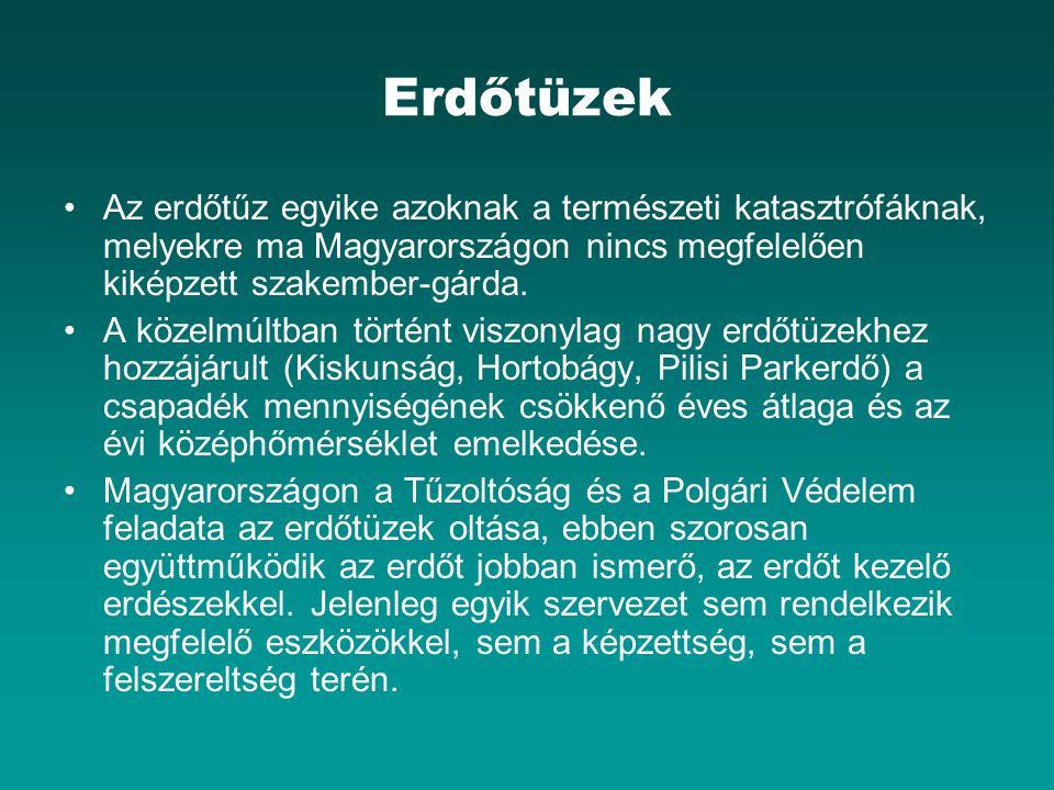 Erdőtüzek Az erdőtűz egyike azoknak a természeti katasztrófáknak, melyekre ma Magyarországon nincs megfelelően kiképzett szakember-gárda.