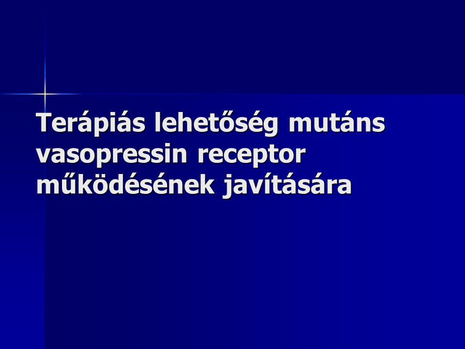 Terápiás lehetőség mutáns vasopressin receptor működésének javítására