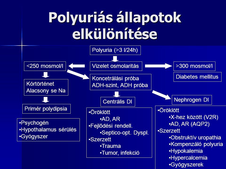 Polyuriás állapotok elkülönítése