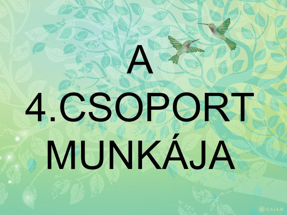 A 4.CSOPORT MUNKÁJA