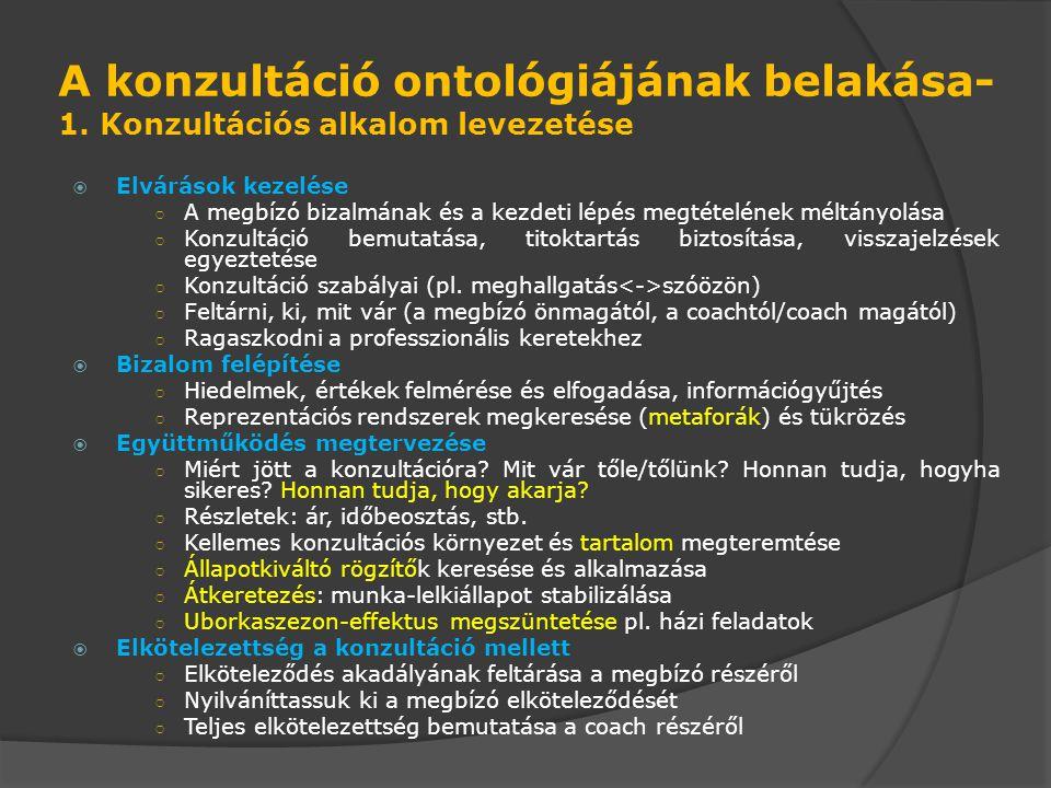 A konzultáció ontológiájának belakása- 1