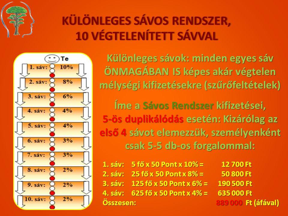 KÜLÖNLEGES SÁVOS RENDSZER, 10 VÉGTELENÍTETT SÁVVAL