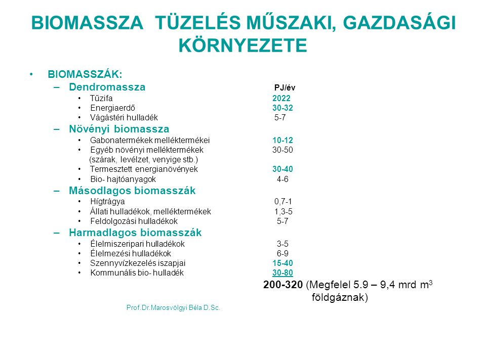 BIOMASSZA TÜZELÉS MŰSZAKI, GAZDASÁGI KÖRNYEZETE
