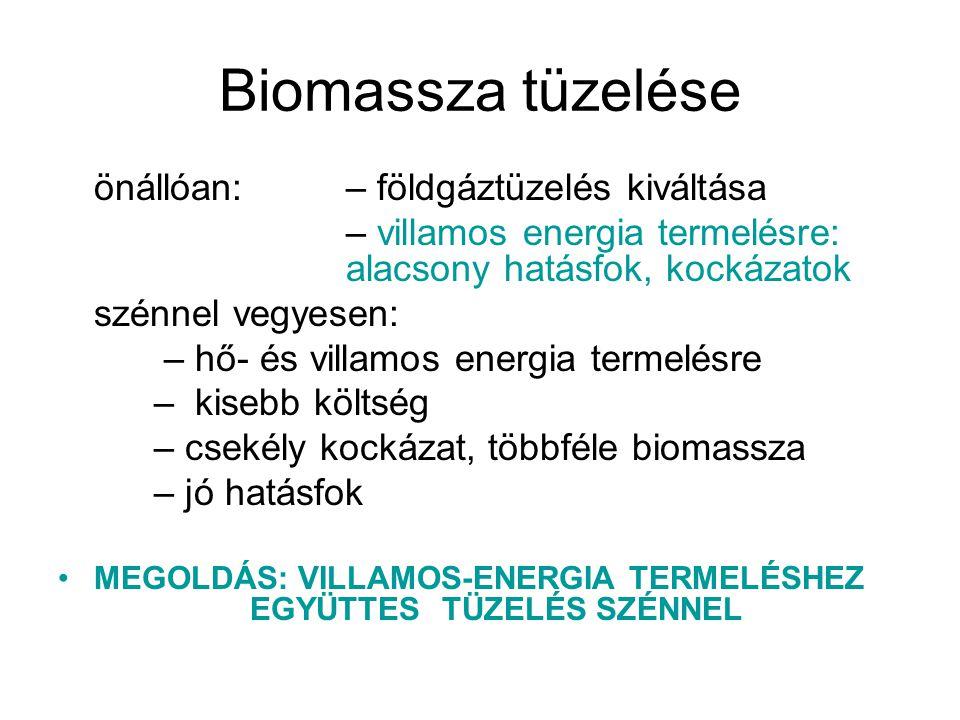 Biomassza tüzelése önállóan: – földgáztüzelés kiváltása