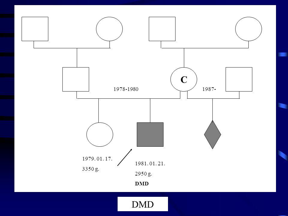 C 1978-1980 1987- 1979. 01. 17. 3350 g. 1981. 01. 21. 2950 g. DMD DMD
