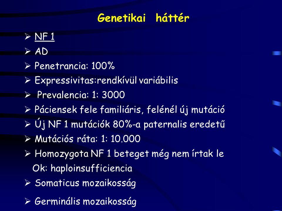 Genetikai háttér NF 1 AD Penetrancia: 100%