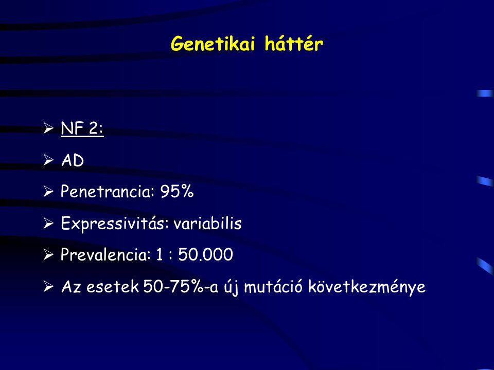 Genetikai háttér NF 2: AD Penetrancia: 95% Expressivitás: variabilis