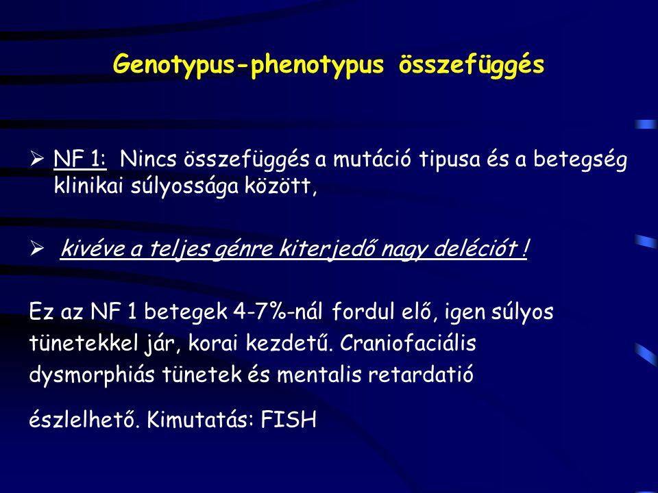 Genotypus-phenotypus összefüggés