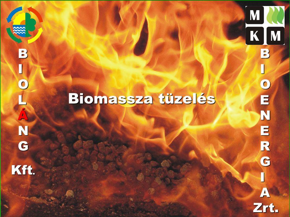 B I O L Á N G B I O E N R G A Biomassza tüzelés Kft. Zrt.
