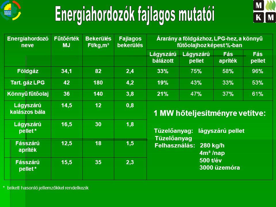 Energiahordozók fajlagos mutatói