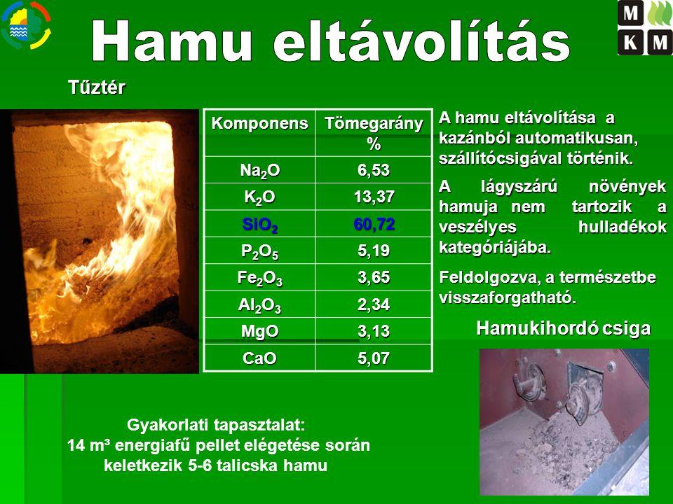 Hamu eltávolítás Tűztér Hamukihordó csiga A hamu eltávolítása a