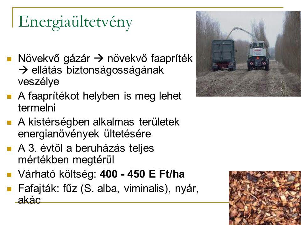 Energiaültetvény Növekvő gázár  növekvő faapríték ár  ellátás biztonságosságának veszélye. A faaprítékot helyben is meg lehet termelni.