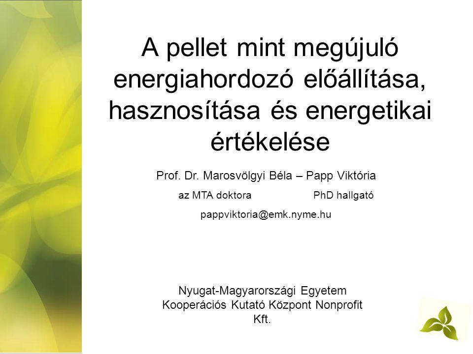A pellet mint megújuló energiahordozó előállítása, hasznosítása és energetikai értékelése