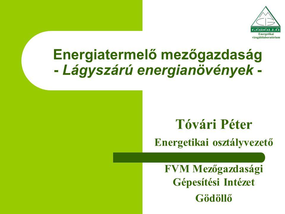 Energiatermelő mezőgazdaság - Lágyszárú energianövények -