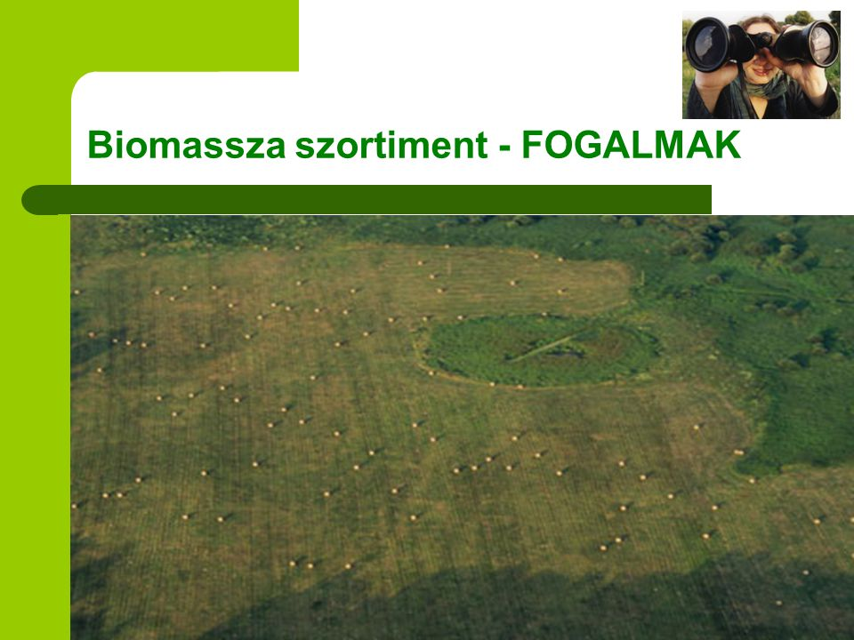Biomassza szortiment - FOGALMAK