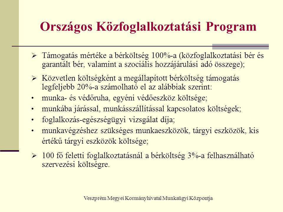 Országos Közfoglalkoztatási Program