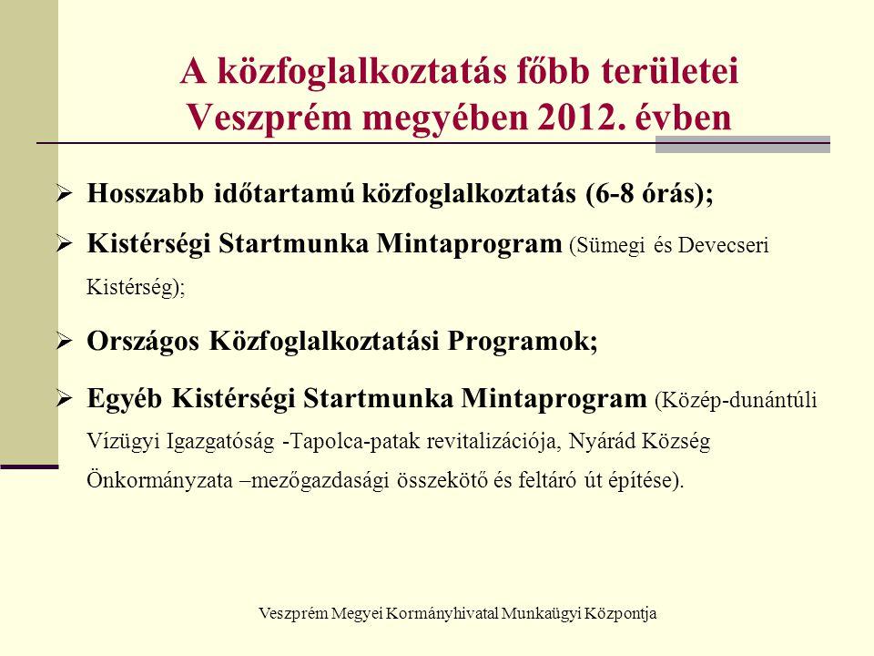 A közfoglalkoztatás főbb területei Veszprém megyében 2012. évben