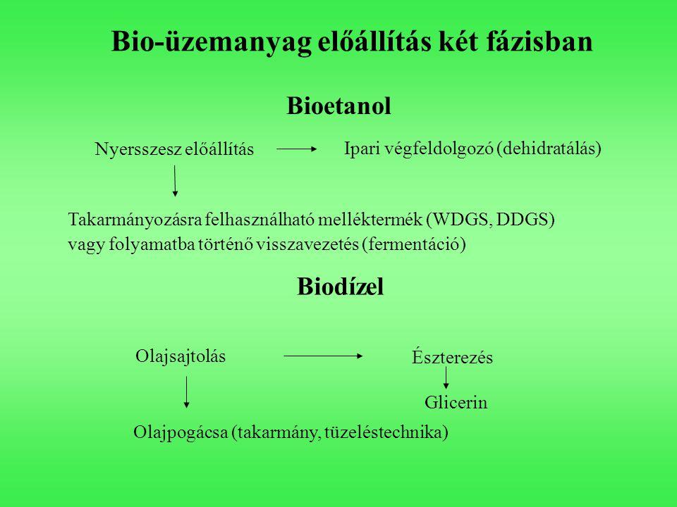 Bio-üzemanyag előállítás két fázisban