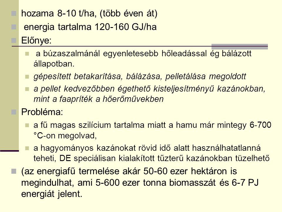 hozama 8-10 t/ha, (több éven át) energia tartalma 120-160 GJ/ha