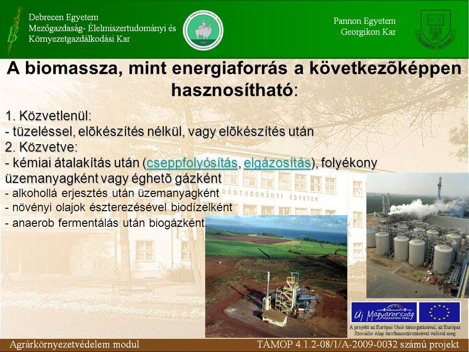 A biomassza, mint energiaforrás a következõképpen hasznosítható: